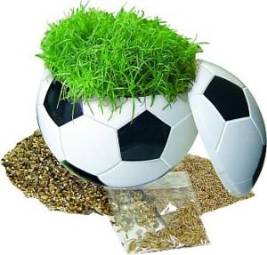 1076 rasender Fußball 2